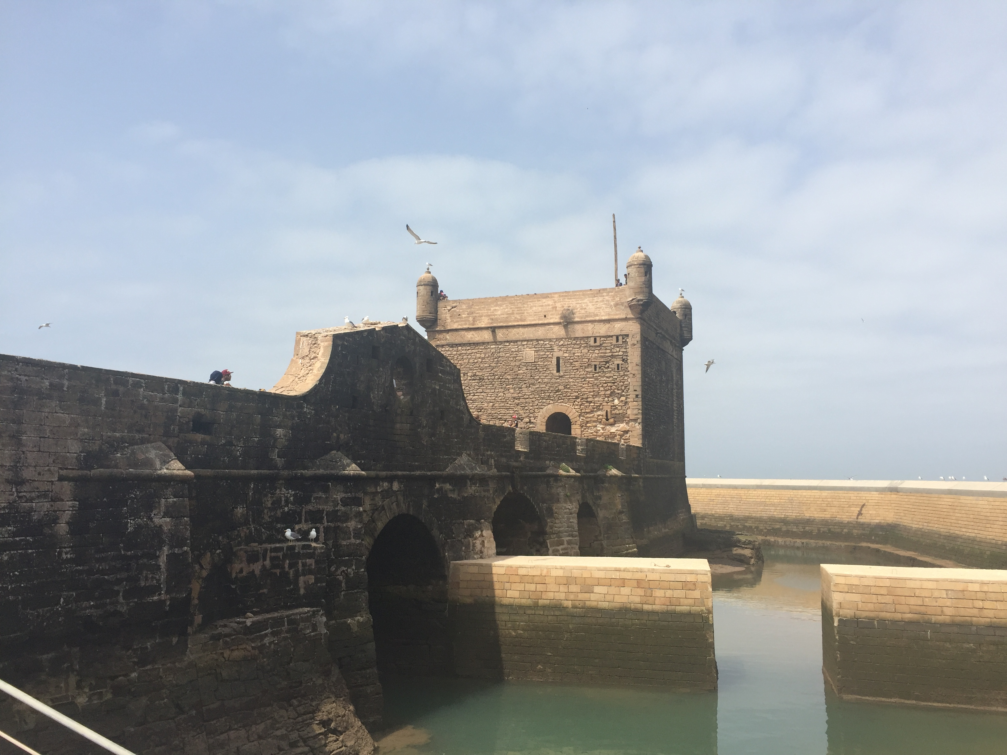 Essaouira Part Two – The Surreal Day Continues